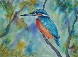 Brusho Kingfisher