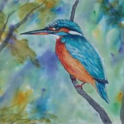 Brusho Kingfisher