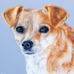 'Daisy Dog' © Alyson Sheldrake