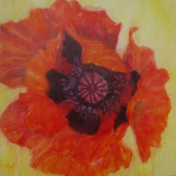 'RED POPPY' © Caroline Wood