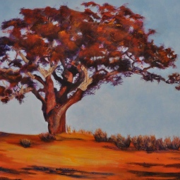 'THE CORK OAK TREE' © Caroline Wood
