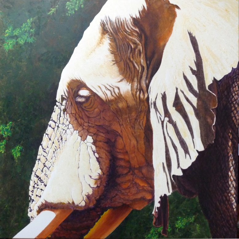Attitude in Manyara - acrylic on Canvas 100x100cm