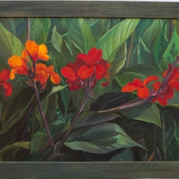 'Cana Lillies' © Steph Hayman