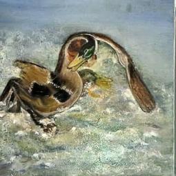 nr 86 'Duck Fight' © Joke van der Steen