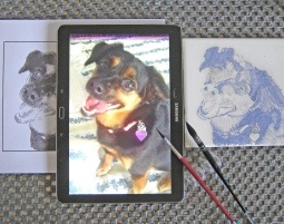 'pet portrait at work - tile painting' © Ana Domingues Pereira