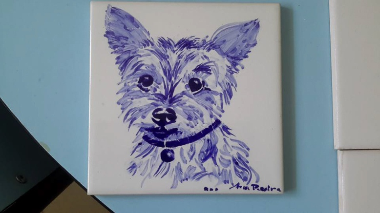 pet portrait - commision