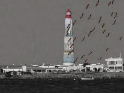 'photo collage - first prize fotodigital magazine' © Ana Domingues Pereira