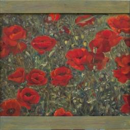 'Poppies' © Steph Hayman