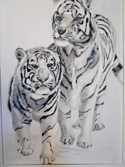 'White Lions 3' © Sara Wooldridge