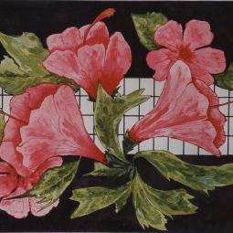 'Hibiscus Behind Screen' © Osmond K Mairs