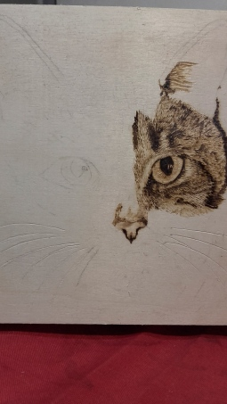 'Cat - Work in Progress' © Andrea Barlow