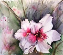 'Almond Blossom' © Tanya Lundmark