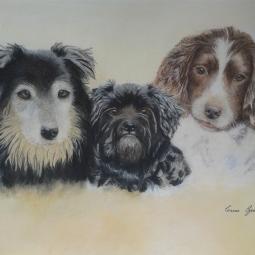 'Carol_threedogs_final' © Leanne Byrom