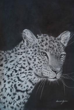 'Leopard in Pastel' © Leanne Byrom
