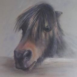 'Pony' © Leanne Byrom