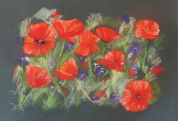 'Poppy Display' © Leanne Byrom