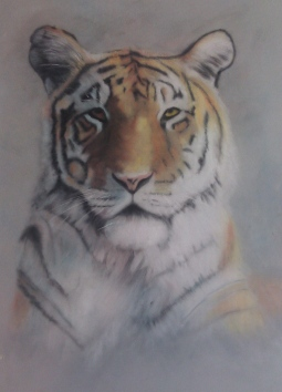 'Tiger' © Leanne Byrom