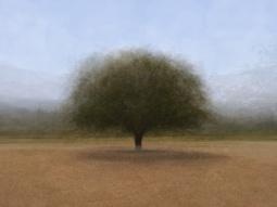 'Drome' © Frans Verschoor