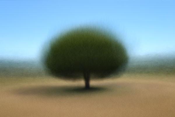 tree exhibition