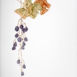 """""""Autumn Vine"""" © Toni Dade"""