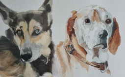 'Gra's Dogs' © Sandie Croft