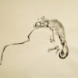 Roadkill Chameleon © RACHEL RAMIREZ