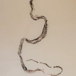 Roadkill Snake 2 © RACHEL RAMIREZ