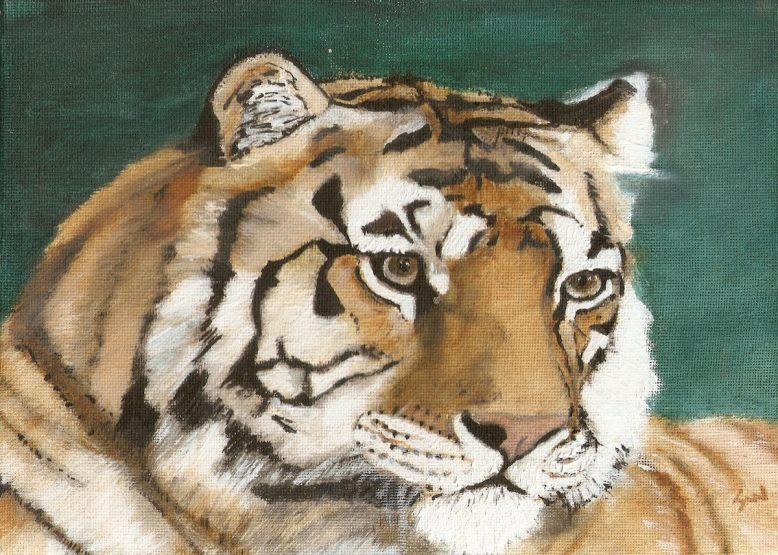 tiger 2.1 1200