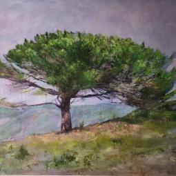 'PINE TREE' © Caroline Wood