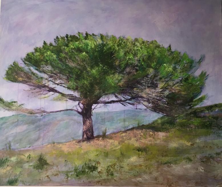 PINE TREE 1200