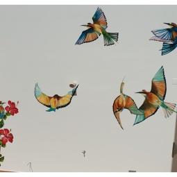 6 Bee eater birds and Hibiscus design, 5 x 6mt, 2 days to complete © Samantha van der Westhuizen