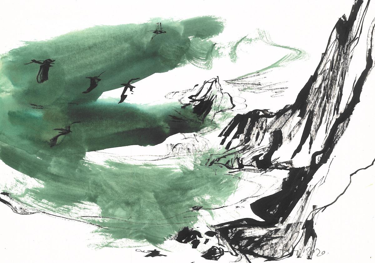 green doves arrifana